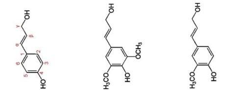 формула лигнина