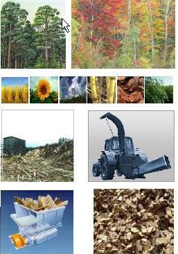 древесно-полимерные композиты - подготовка сырья